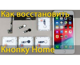 Как восстановить кнопку home на iPhone