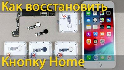 Як відновити кнопку home на iPhone